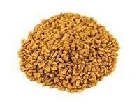 Trigonella foenum graecum Dry Extract