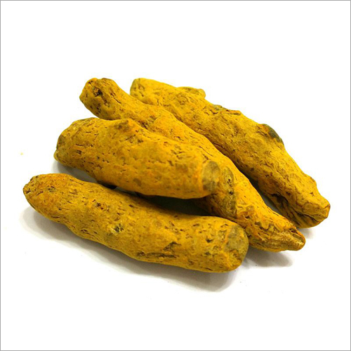 Dried Turmeric Finger
