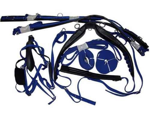 Horse Riding Harness