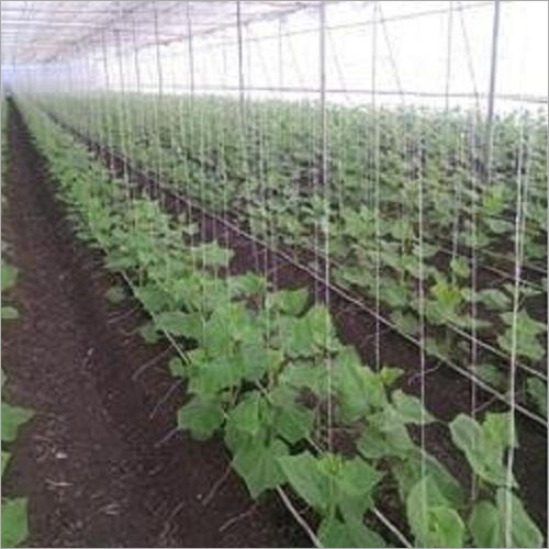 Agriculture Greenhouse Accessories