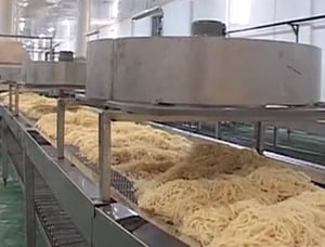Boiled and Steam Noodle Machine