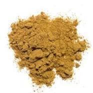 Cuminum cyminum Dry Extract