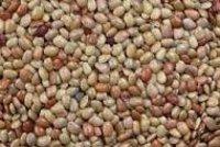 Dolichos Biflorus Dry Extract