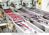 PLC Programming In Food Processing Machine