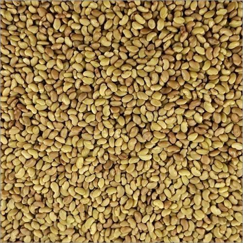Alfalfa Seeds | Alfafa bays & pellets | Lucerne Hay