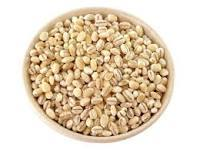 Hordeum vulgare Dry Extract