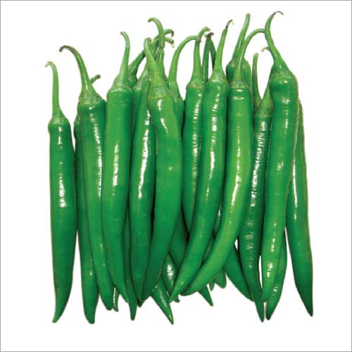 Chamili F1 Hybrid Chilli Seeds