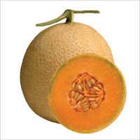Sanjay F1 Hybrid Musk Melon Seeds