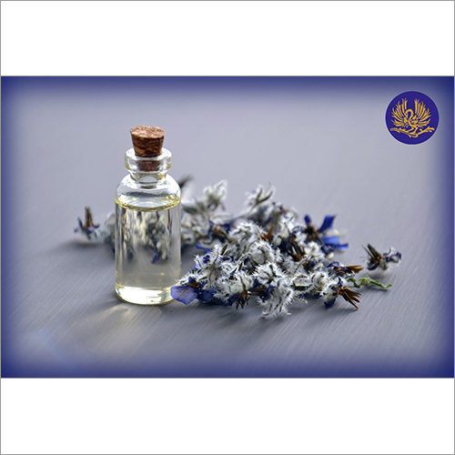 Fragrance Floral Perfumes