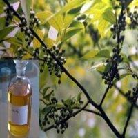 Eucalyptus Oil 60 Cineole