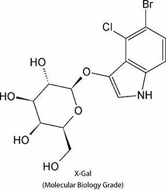 LITHIUM CHLORIDE (For Molecular Biology)