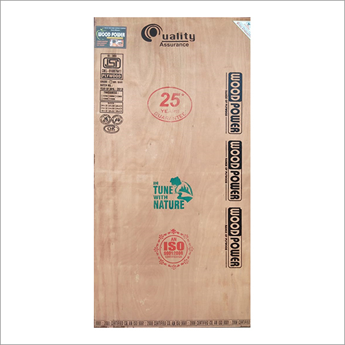 High Quality Door Plywood Sheet