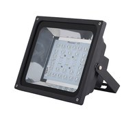 80W Flood Light