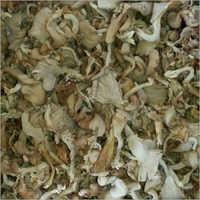 Organic Oyster Mushroom