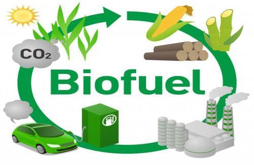 Bio ethanol fuel