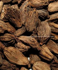 Big Brown Cardamom