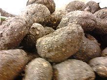 Amorphophallus paeoniifolius Dry Extract