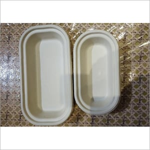 Biodegradible Food Container