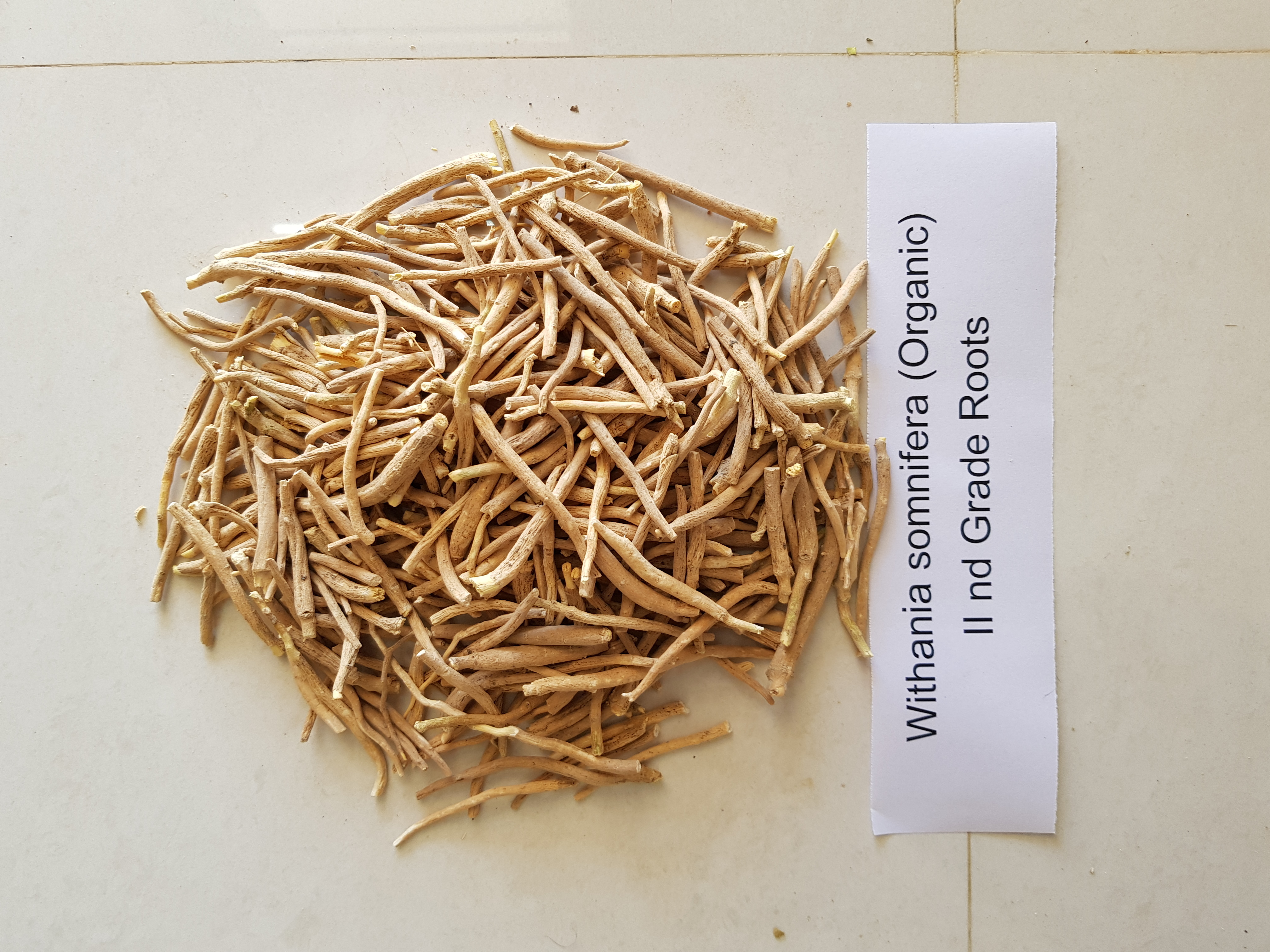 Withania somnifera Roots