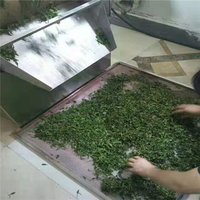 Green Tea Drying Fixation Machine