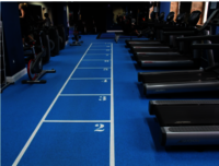 Shanghai Factory 6Mm Thickness Rubber Fitness Gym Flooring