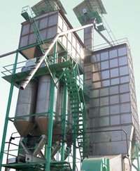 Stainless Steel Paddy Dryer
