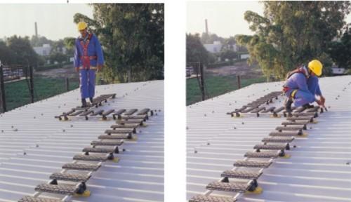 Roof Ladder / Cat Ladder