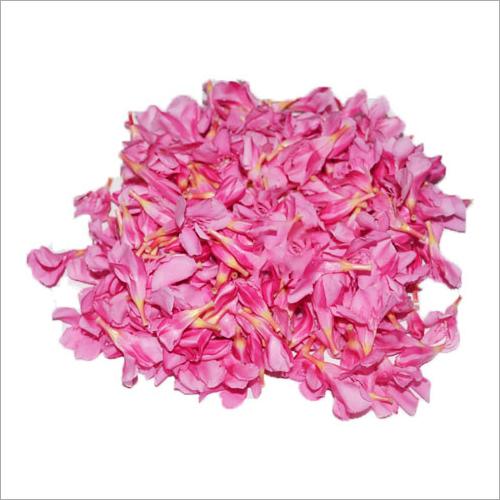 Rose Flower at Price 150 INR/Kilograms in Bengaluru | GET