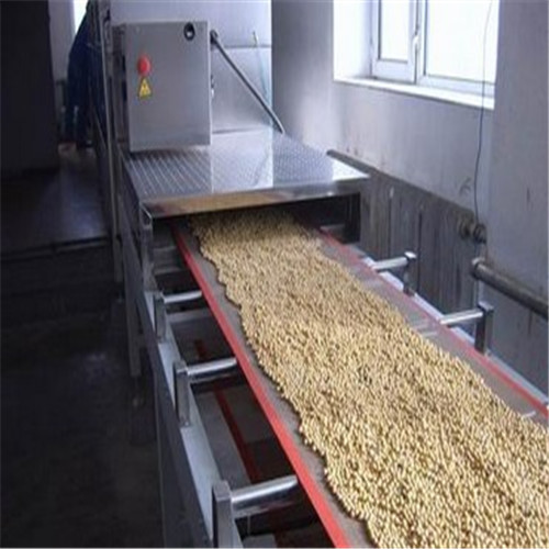 Continuous Electric Nut Roasting Machine