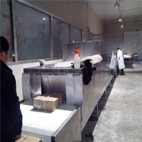Industrial Microwave Frozen Seafood Meat Thawing Equipment