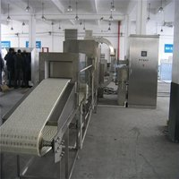 Commercial  Continuous Meat Defrosting Machine