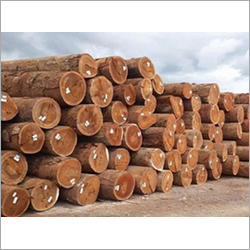Forestry Products