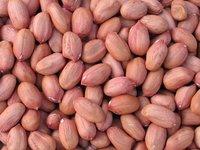 Mathadi Peanut