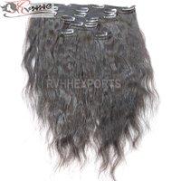 Remy Virgin Clip Hair Extension