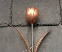 Copper Tulip with Copper Leaves