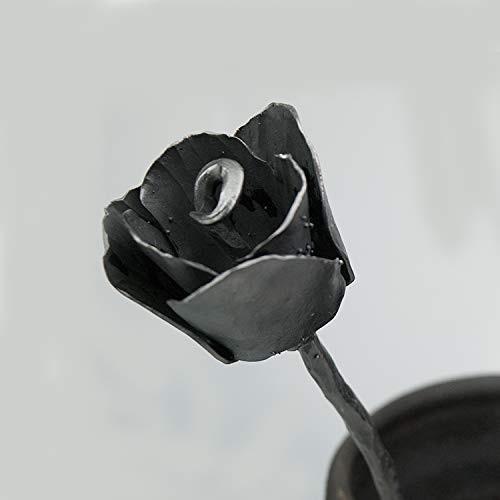 Forever Tulip