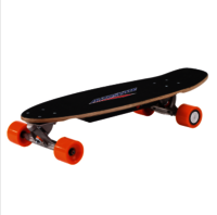 Electric Skateboard PM-250W