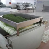 Tunnel Continuous Green Tea Dryer