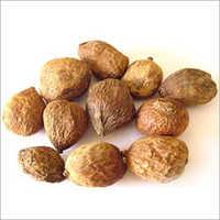 Madanaphala Seed
