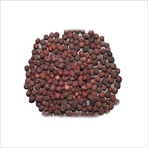 Embelia Ribes