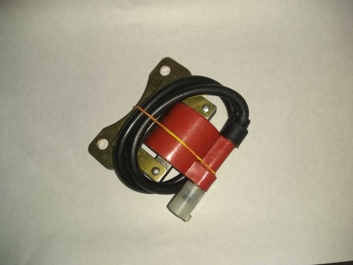 CNG 2 STORKE Ignition Coils