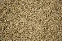 Abs Beige granules