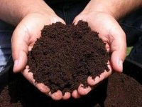 Vermicompost Fertilizer
