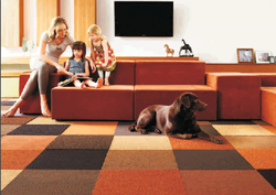 Polypropylene Carpet