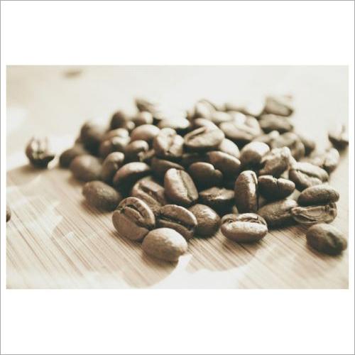 Arabica Plantation A Coffee
