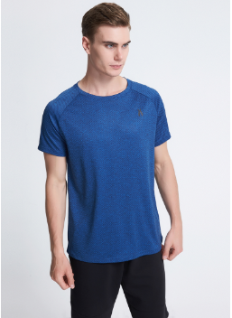 Oem Polyester Dry Fit Running T Shirt , Stripe Sports T-shirt for Men