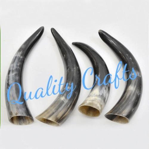 Buffalo Drinking Horn