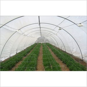 Insect Net PolyHouse