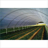 Poly Greenhouses Film