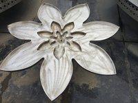 Lotus Water Body